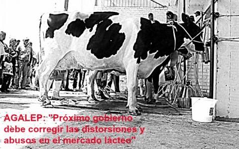 ganaderos_lecheros_peruanos