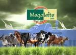 megaleite 2016