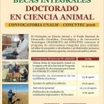 Becas en Doctorado en Ciencia Animal – UNALM