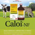 Uso de CALOI NF® en la Crianza de Ternero y Recría