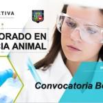 UNALM: Convocatoria de Becas para estudios de Doctorado en Ciencia Animal