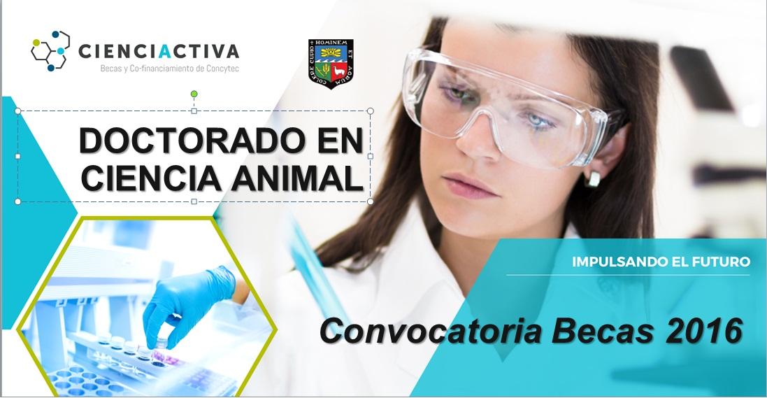 Cronograma_de_la_convocatoria_doctorado_UNALM