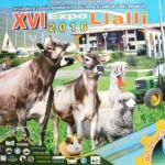 XVI Expo Lalli 2016: Feria Ganadera de Exposición y Remate de Ganado para Camal y Reproducción