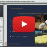 Videoclase: Condiciones para Formular Raciones en Ganado Caprino
