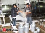produccion lechera