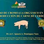Videoclase: Uso del Cromo Orgánico en la Producción de Carne de Cerdo