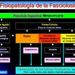 Fisiopatología Parasitaria veterinaria: Mapas mentales