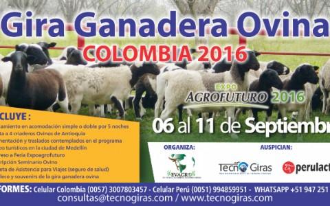 Gira_Ganadera_Ovina_Colombia