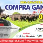 Gira Ganadera: Compra Ganado en Colombia