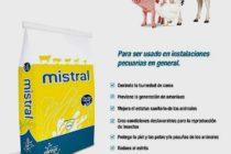 Mistral: Aumenta la Higiene y Mejora el Rendimiento en Tú Ganadería
