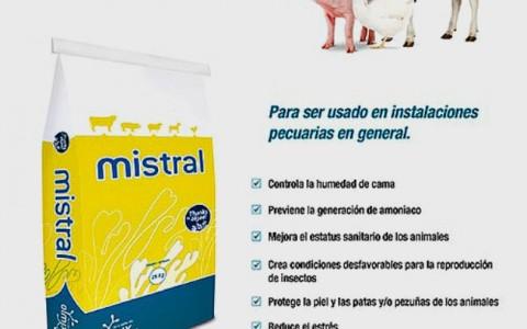 Mistral_nota_01