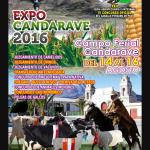Expo Candavare 2016: XXII Feria Agropecuaria y Artesanal, IV Concurso Oficial del Caballo Peruano de Paso