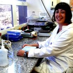 Biopelículas de Bacterias Lácticas Protegen Superficies de Industrias Alimentarias