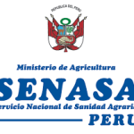 Senasa Realizará Ejercicio de Simulacro de Fiebre Aftosa en Perú