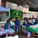 Proyecto Ganadero en Ayacucho Busca Elevar la Producción Lechera del Ganado Criollo