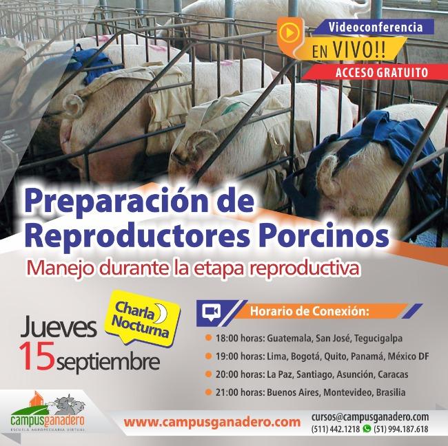 charla_preparacion_de_reproductores_porcinos