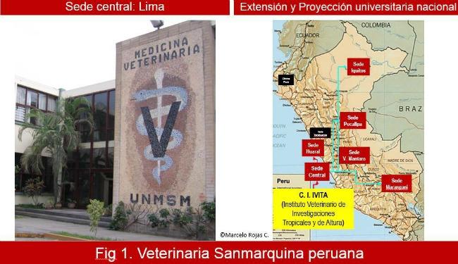 Veterinaria Sanmarquina