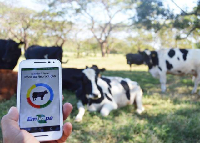 aplicacion_manejo_reproductivo_en_vacas