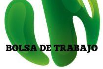 Empresa Solicita Consultor Técnico Comercial en Ganadería – Cajamarca