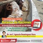 Curso On Line Teórico - Práctico: Balance de Raciones en Ganado Bovino de Engorde con Software
