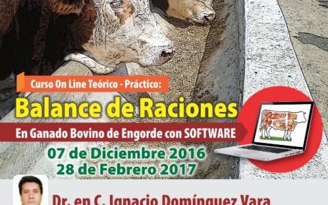 curso_online_balance_raciones_bovinos_engorde_2016