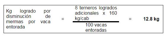 ternero-producido_2