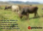 coordinador_proyecto_ganadero_neozelandes_en_peru