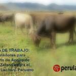 Bolsa de Trabajo: Proyecto Lechero Internacional Solicita Tres Coordinadores Regionales para Cajamarca, Cusco y Puno