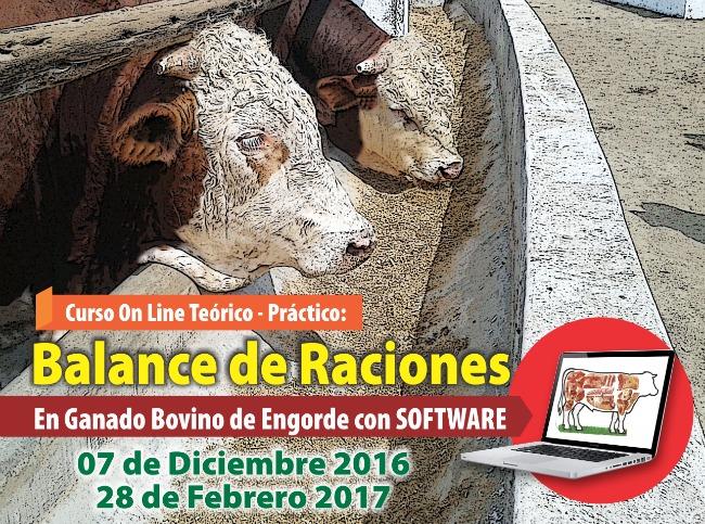 creando_raciones_para_bovinos_de_carne
