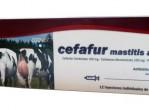 cefafur-mastitis