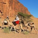Los Derechos de Tenencia de la Tierra: Vitales Para la Resiliencia de las Comunidades Pastoriles