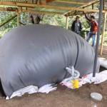 Biodigestores: La Solución Para Aprovechar Desechos Agrícolas