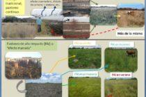 Pastoreo Estratégico de Alto Impacto, una Herramienta para Optimizar el Crecimiento de los Pastizales en el Norte de Corrientes