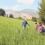Ecuador: Proyecto Reduce los Gases Dañinos del Ganado