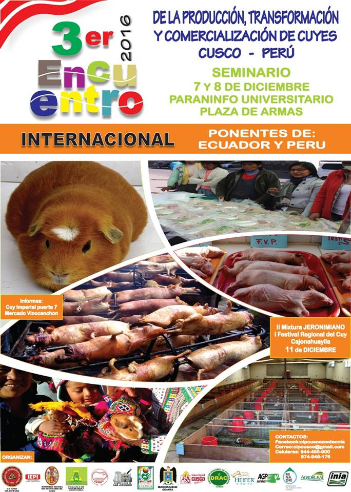 encuentro_criadores_de_cuyes_cusco_2016
