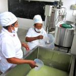 Comuneras Elaboran Quesos de Cabra y lo Comercializan en Piura y Sullana