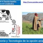 Erradicación de la Fasciola Hepatica: Aporte de la Ciencia y Tecnología Peruana