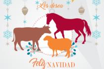 La Familia Andeanvet les Desea una Feliz Navidad y un Próspero Año Nuevo 2017