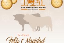 Cabaña San Edmundo Andino les desea una Feliz Navidad y un Próspero Año 2017