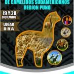 Puno: III Congreso De Productores de Cámelidos Sudamericanos