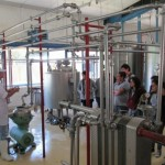 Estudiantes Chilenos Aprenden Sobre Inocuidad en Producción de Quesos