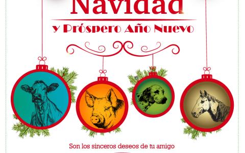 saludo-navidenso-facebook_01