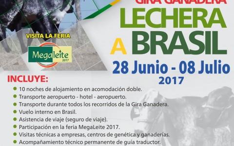 AFICHE GIRA GANADERA LECHERA