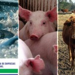 VI Congreso Argentino de Nutrición Animal