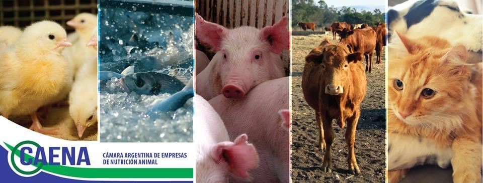 Congreso_Argentino_Nutricion_Animal_2017 (1)