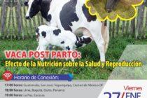 EN VIVO => Vaca Postparto: Efecto de la Nutrición sobre la Salud y Reproducción