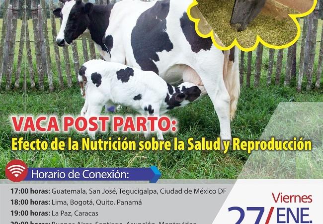 Nutricion_de_la_Vaca_Postparto