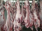 carne_de_calidad_honduras