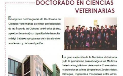 doctorado_universidad_mayor_san_marcos