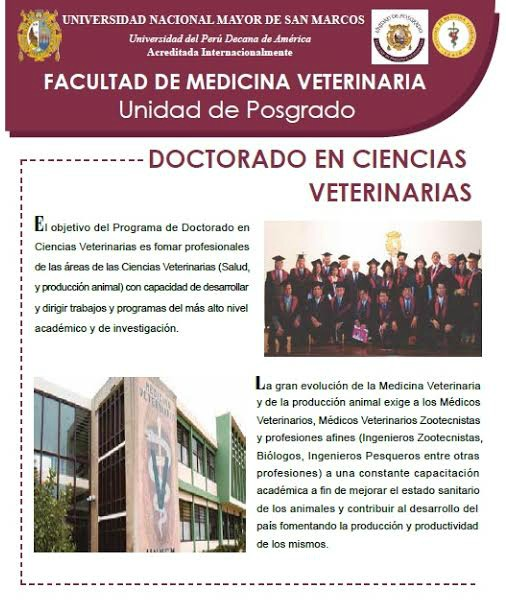 doctorado_universidad_mayor_san_marcos